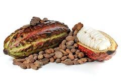 Плодоовощ какао Стоковые Изображения RF