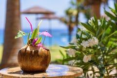 Плодоовощ кокоса на таблице Стоковое Изображение