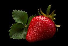 Плодоовощ клубники на черноте Стоковые Фото