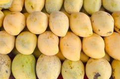 Плодоовощ мангоа Стоковая Фотография RF