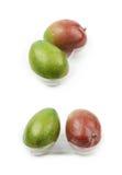 2 плодоовощ манго в пластичном случае Стоковое Изображение