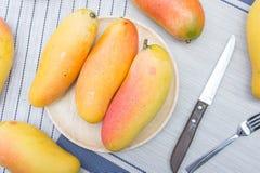 Плодоовощ манго, плодоовощ на лете Стоковые Изображения