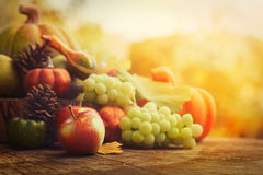 Плодоовощ осени Стоковое фото RF