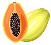 Плодоовощ папапайи Стоковое Изображение RF