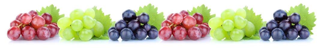 Плодоовощ свежих фруктов виноградин в ряд стоковая фотография rf