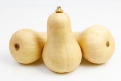 3 плодоовощ сквоша butternut Стоковая Фотография
