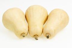 3 плодоовощ сквоша butternut Стоковое Фото