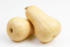 2 плодоовощ сквоша butternut Стоковое Изображение