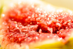 Плодоовощ смоковницы Стоковые Изображения RF