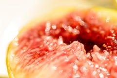 Плодоовощ смоковницы Стоковое Изображение RF