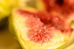 Плодоовощ смоковницы Стоковое фото RF