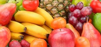 Плодоовощ собрания с ананасом Стоковые Фото