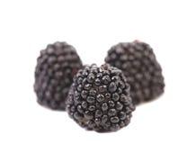 Плодоовощ студня в форме конфеты ягод. Стоковое Изображение