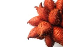 плодоовощ тайский Стоковое Изображение