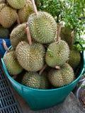 Плодоовощ дуриана Стоковое фото RF