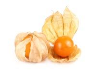 Плодоовощ физалиса, плодоовощ ягоды накидки изолированный на белизне Стоковая Фотография