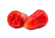 Плодоовощ яблока косуль Стоковые Изображения RF