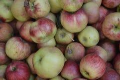 Плодоовощ, яблоки Стоковое Изображение RF