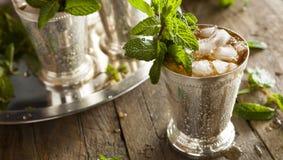Плодоовощ cocktail Стоковые Изображения RF