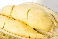 Плодоовощ Durain на белой предпосылке Стоковое Изображение RF