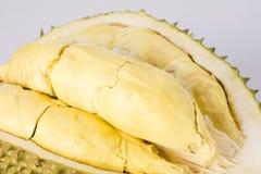 Плодоовощ Durain на белой предпосылке Стоковые Изображения RF