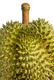 плодоовощ durian тайский Стоковое фото RF