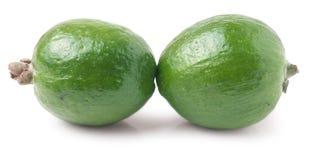2 плодоовощ feijoa Стоковое фото RF