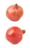 Плодоовощ granatum punica гранатового дерева Стоковое Фото