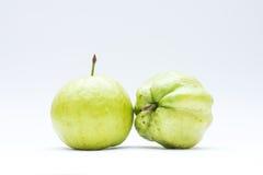 Плодоовощ Guava Стоковая Фотография RF