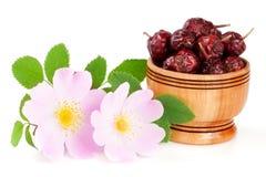 Плод шиповника цветет с ягодами лист и плода шиповника в деревянном шаре на белой предпосылке Стоковое Фото
