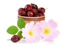Плод шиповника цветет с ягодами лист и плода шиповника в деревянном шаре на белой предпосылке Стоковая Фотография RF