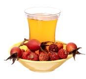 Плод шиповника чая Стоковые Фото