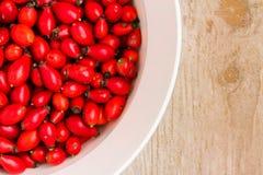 Плоды шиповника Стоковая Фотография RF