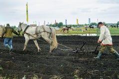 Плуг pulles лошади проекта через поле Стоковая Фотография
