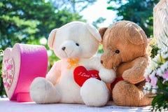 2 плюшевого медвежонка держат усаживание сформированное сердцем на таблице с natu Стоковая Фотография
