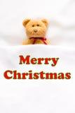 ` ` Плюшевого медвежонка и сообщения с Рождеством Христовым на белой предпосылке Стоковое Изображение RF