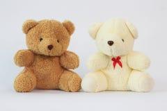 2 плюшевого медвежонка на белой предпосылке Стоковые Фото