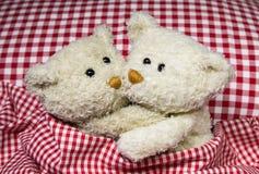 Плюшевые медвежоата в медовом месяце - концепции для влюбленности под человеком и женщиной Стоковые Фото