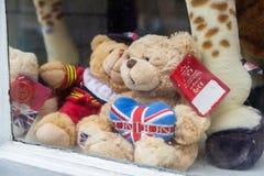 Плюшевые медвежоата в окне сувенирного магазина Стоковое Фото
