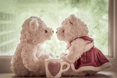 Плюшевые медвежоата пар в влюбленности Стоковое Изображение RF