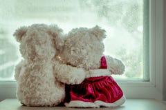 Плюшевые медвежоата пар в объятии влюбленности Стоковое Изображение