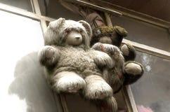 Плюшевые медвежоата смертной казни через повешение стоковые фотографии rf