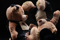 Плюшевые медвежоата Стоковая Фотография