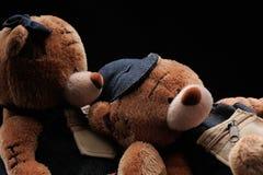 Плюшевые медвежоата Стоковое фото RF