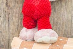 Плюшевый медвежонок большой ноги милый Стоковые Фотографии RF