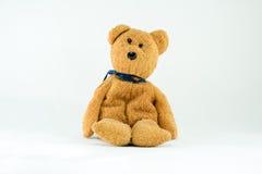 Плюшевый медвежонок Брайна изолированный на белизне Стоковое Изображение