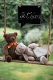 Плюшевый медвежонок в влюбленности Стоковые Изображения RF