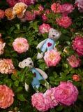 Плюшевый медвежонок 2 в розах Стоковые Изображения