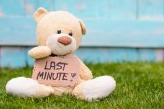 Плюшевый медвежонок держа картон с информацией последняя минута стоковое фото rf