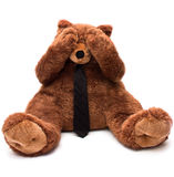 Плюшевый медвежонок дела Стоковые Фото